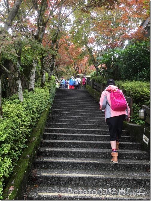 太平山磞磞車站階梯1