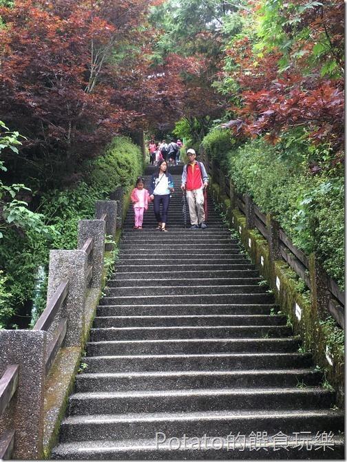 太平山磞磞車站階梯11