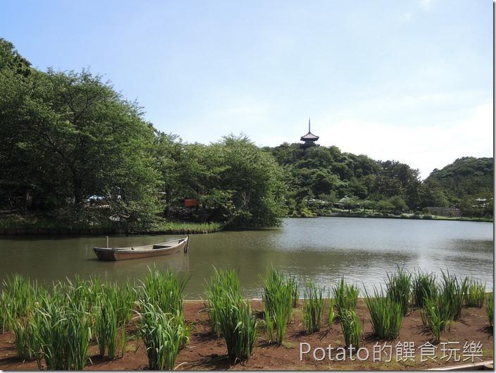 日本三溪園園景1