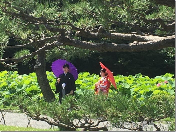 日本三溪園婚紗照1