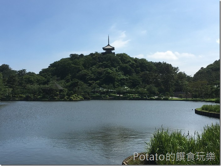 日本三溪園園景11