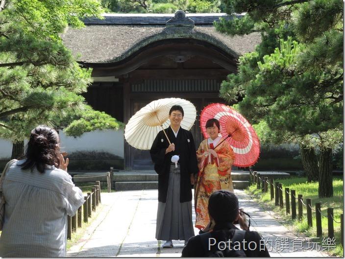 日本三溪園婚紗照
