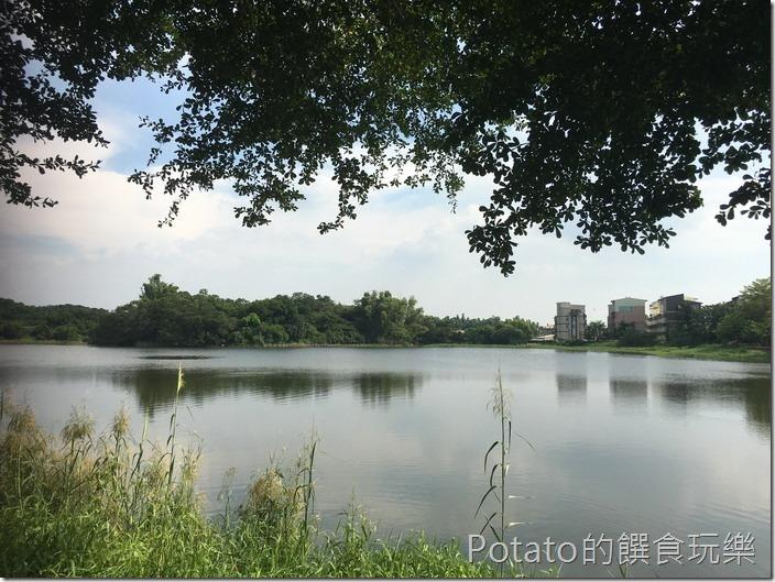 【大潭埤旺萊公園】8