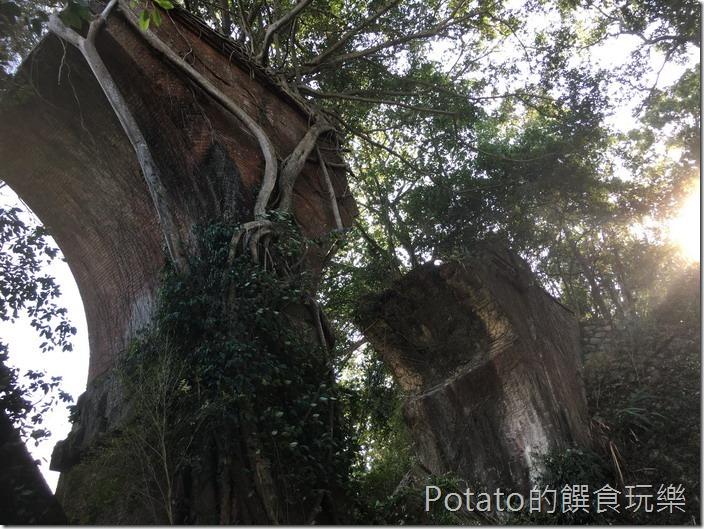 勝興舊鐵道自行車龍騰斷橋1